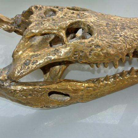large Crocodile skull solid brass large heavy decoration stunning hand made 50cm