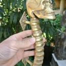 Medium SKULL handle DOOR PULL spine solid BRASS old vintage style 280mm B amazing