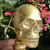 Medium SKULL handle DOOR PULL spine solid BRASS old vintage style 280mm B amazing