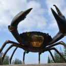 "large MUD CRAB solid brass aged brown heavy stunning 10"" hand made"
