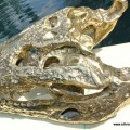 Crocodile skull solid brass large heavy decoration stunning hand made 365mm statue head jaw teeth
