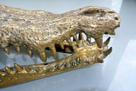 large Crocodile skull solid brass large heavy decoration stunning hand made 50cm