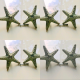 "4 small 3"" STAR FISH solid BRASS knobs tropical vintage old style 70 mm sea side beach green patina cabinet hardware hand made nautical (Copy)"