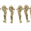 "6 small SEAHORSE solid brass HOOKS COAT wall mounted beach old style hook 8.5 cm 3"" polished brass"